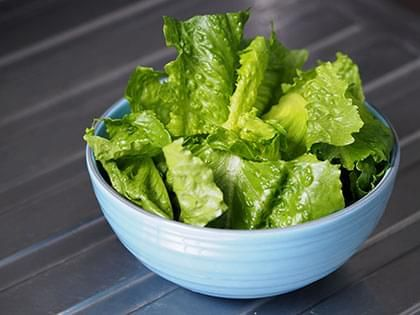 Green Lettuce Salad