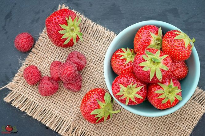 Small Bowl of Strawberries and Raspberries